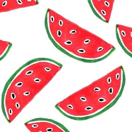 estampa melancias por J. Borges