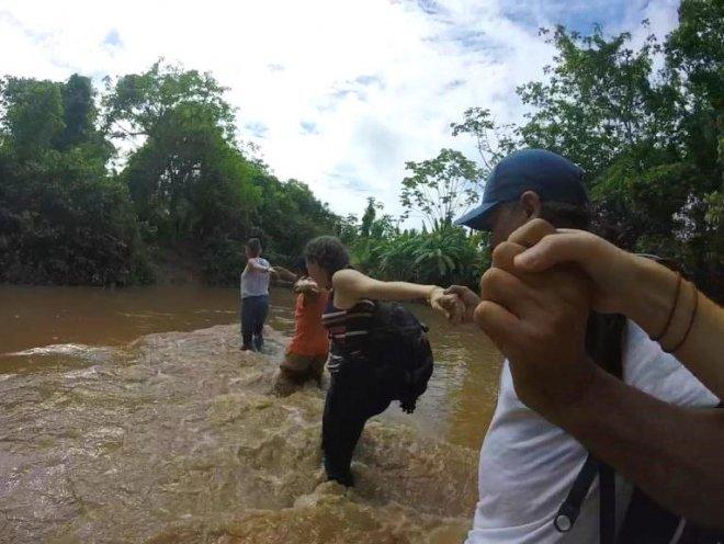 Pluma de algodao pima organica na regiao de Juanjui - Peru - timirim 2016