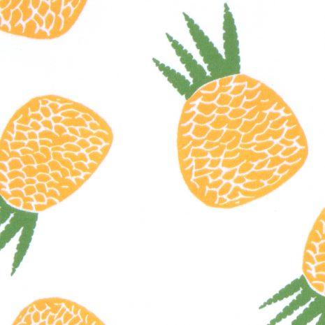 estampa abacaxi por J. Borges