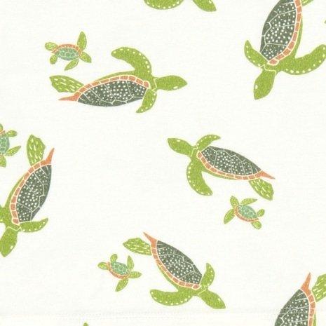 estampa tartarugas por J. Borges