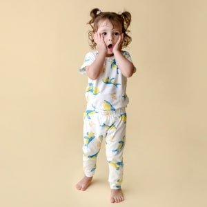 camiseta e calça infantil baleias azus de algodão pima orgânico