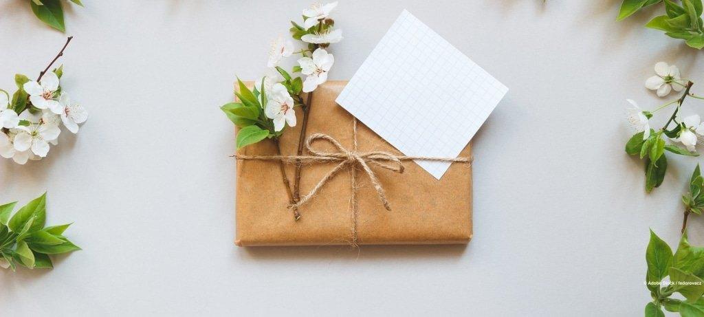 Blog timirim aniversario ecologico festa criança embalagem presente